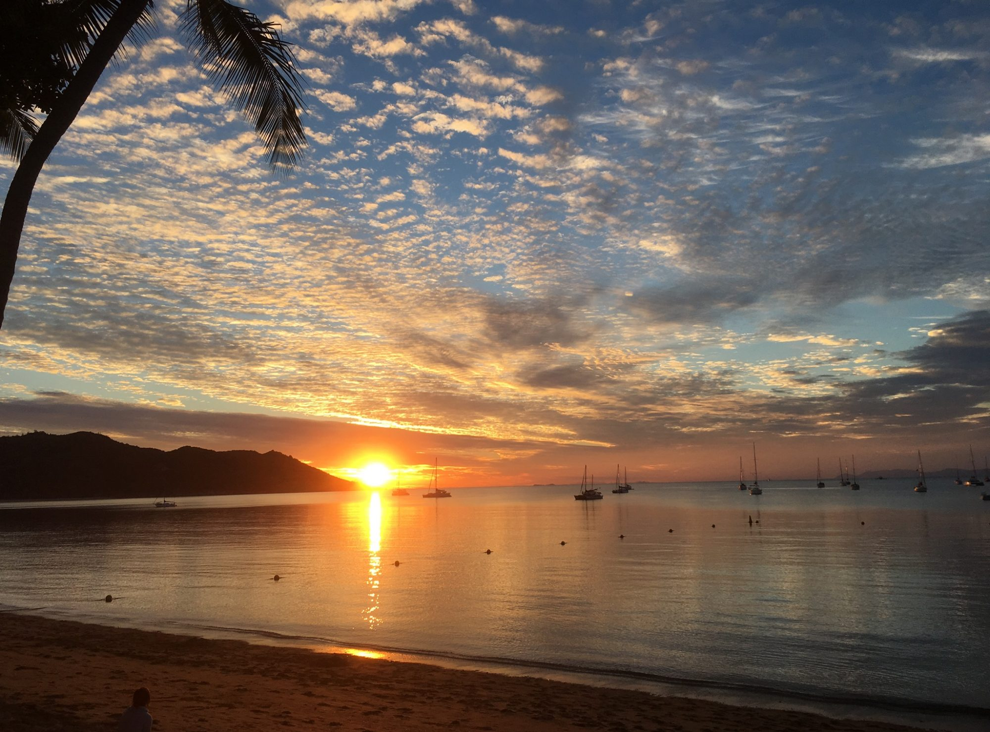 Magnetic Island - pure allure